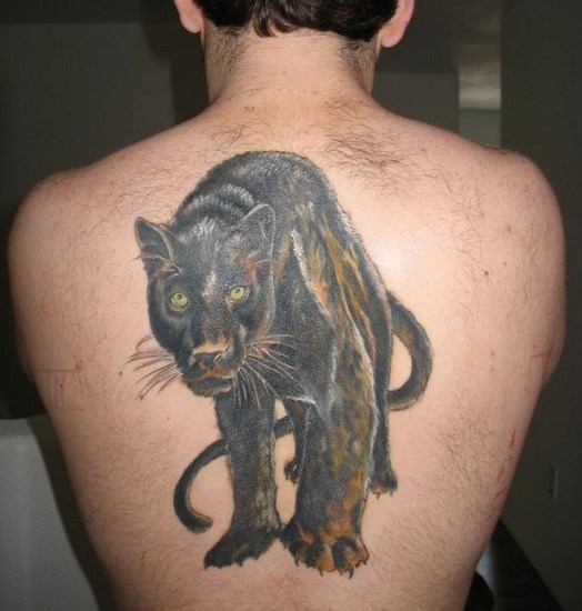 old panther tattoo design on back