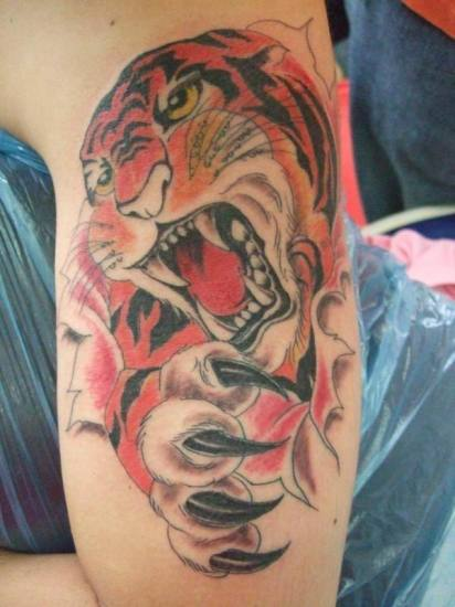 roaring tiger tattoo design on leg